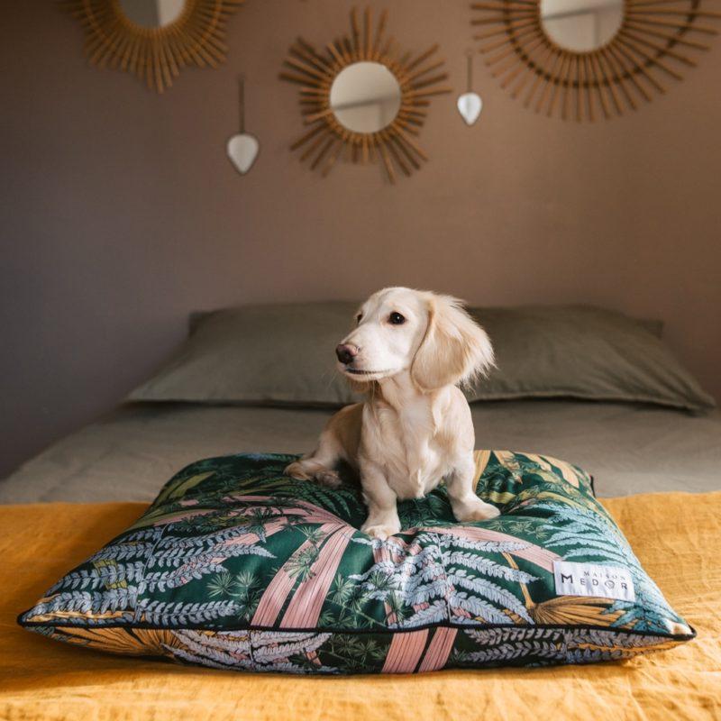 le coussin pour chiens lavable made in france par maison médor