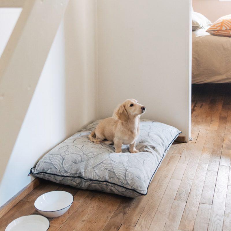 le coussin made in france pour chien maison médor java