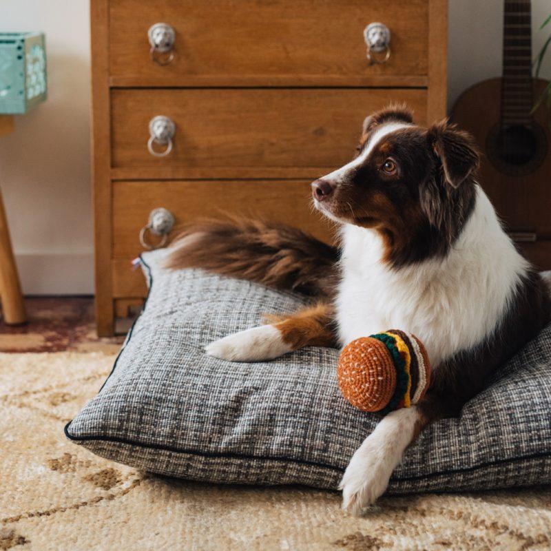 le confortable coussin chien de maison médor