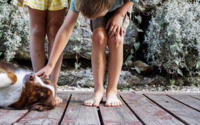 8 RAISONS POUR LESQUELLES TOUS LES ENFANTS DEVRAIENT AVOIR UN CHIEN