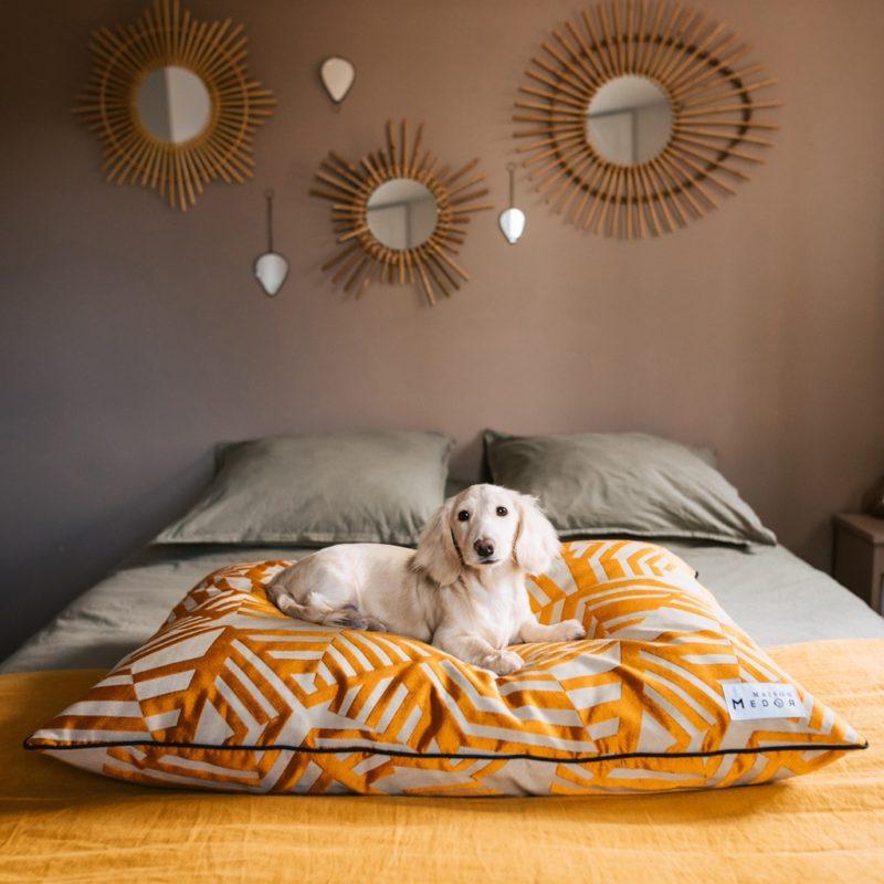 le coussin pour chien made in france indiana de maison médor