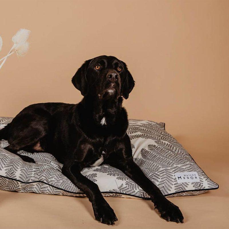 le coussin pour chien design et beau Maison Médor