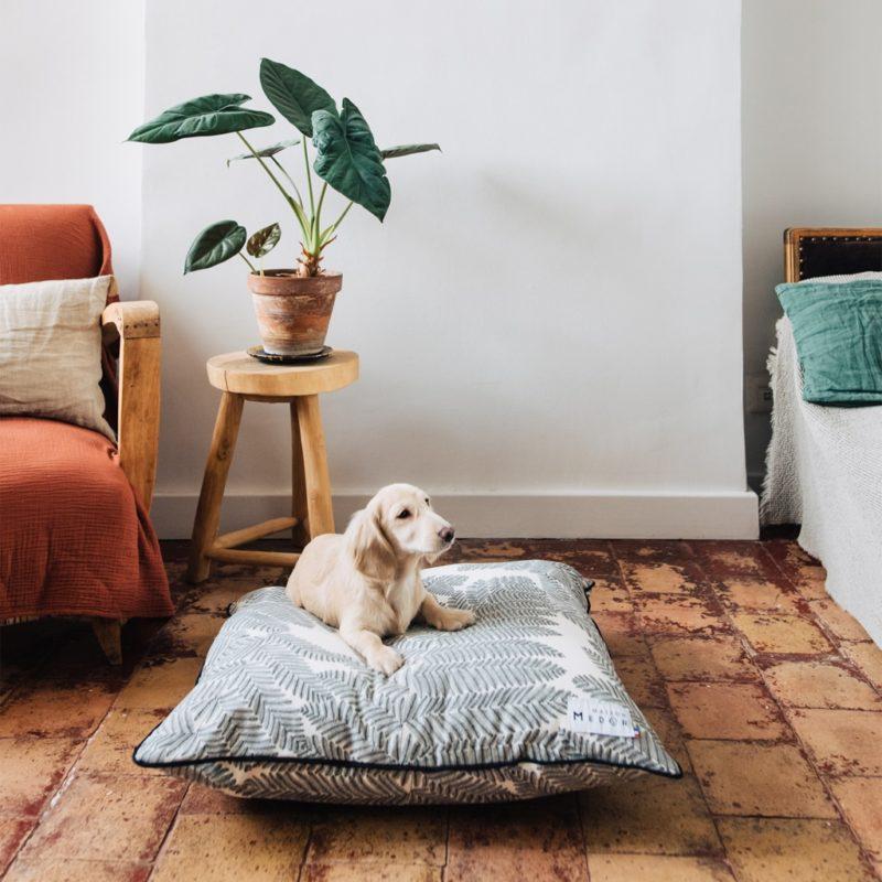 le modèle de coussin chien de maison médor la marque française
