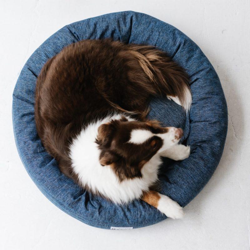 vue de haut du panier pour chien maison médor modèle césar