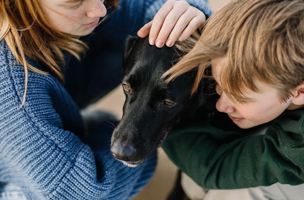 Avoir un chien a la maison avec des enfants c'est un bon choix