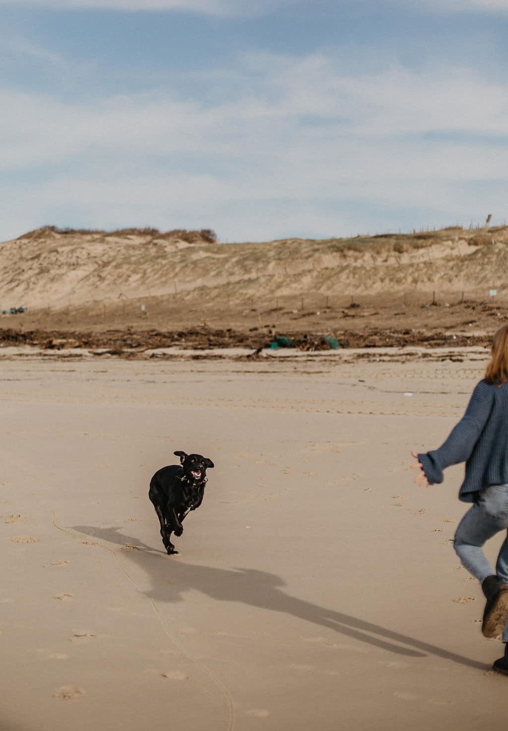 Rox le chien d'An qui court sur la plage pour Maison Medor