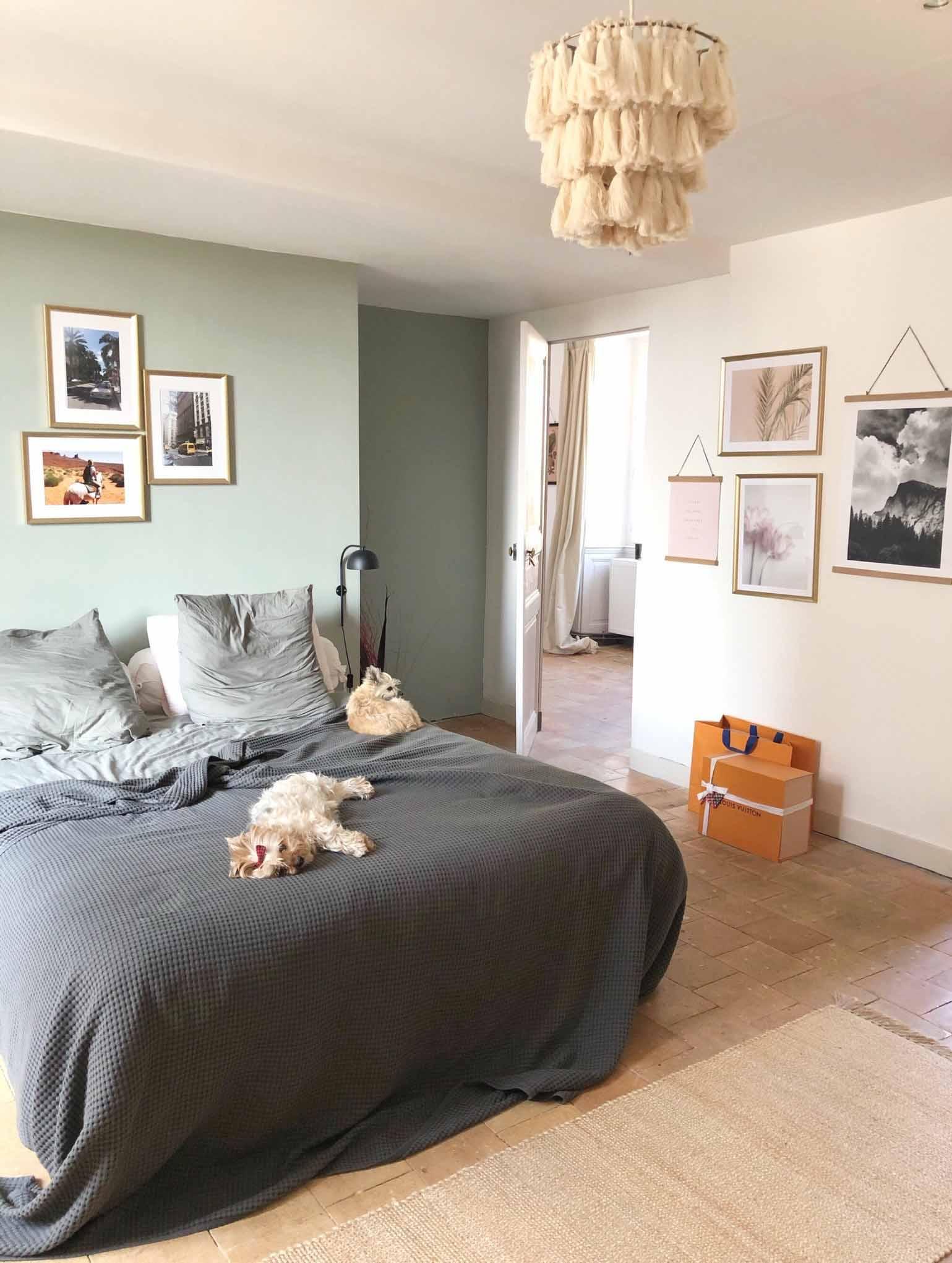 deux chiens sur un lit pour Maison Medor