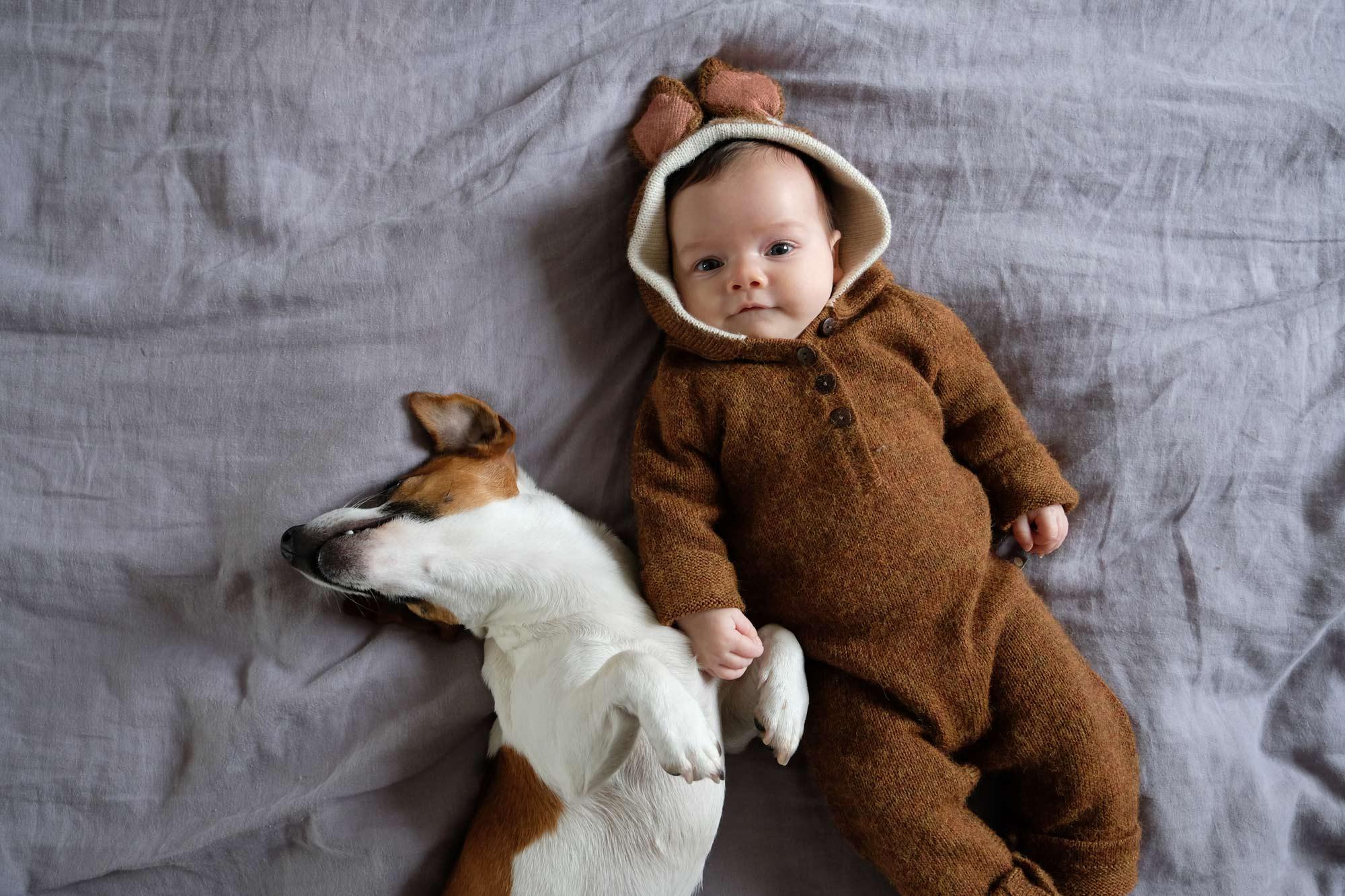 le chien de latoupie @latoupie et le bébé
