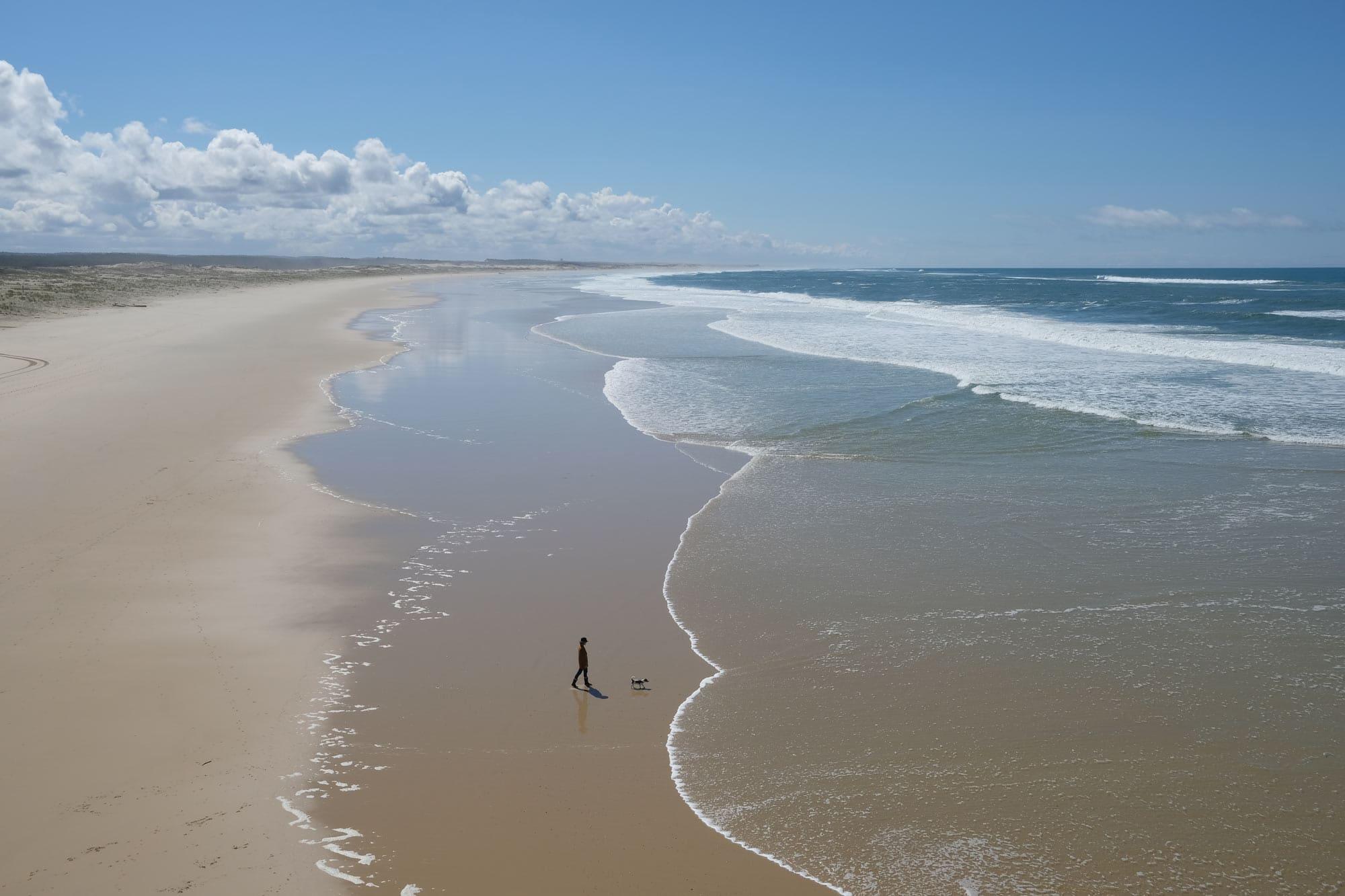 latoupie @latoupie à la plage avec son chien