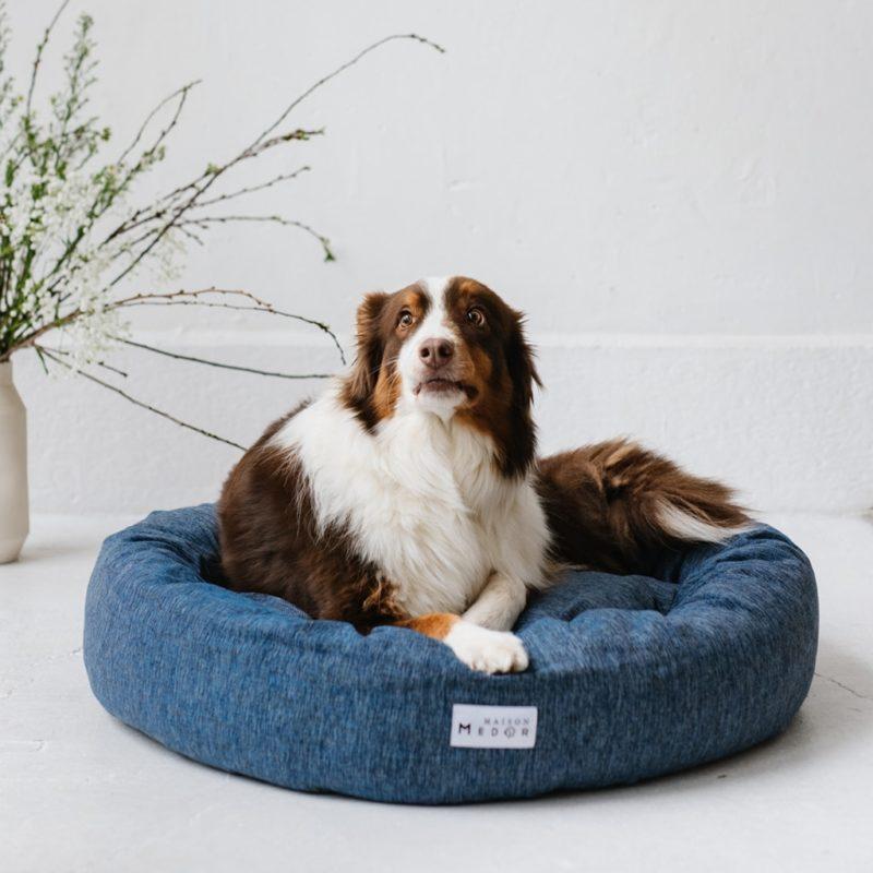 le panier pour chiens césar avec un berger australien made in france maison médor