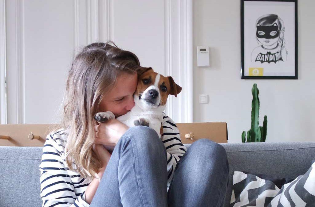 latoupie avec son chien pour maison médor