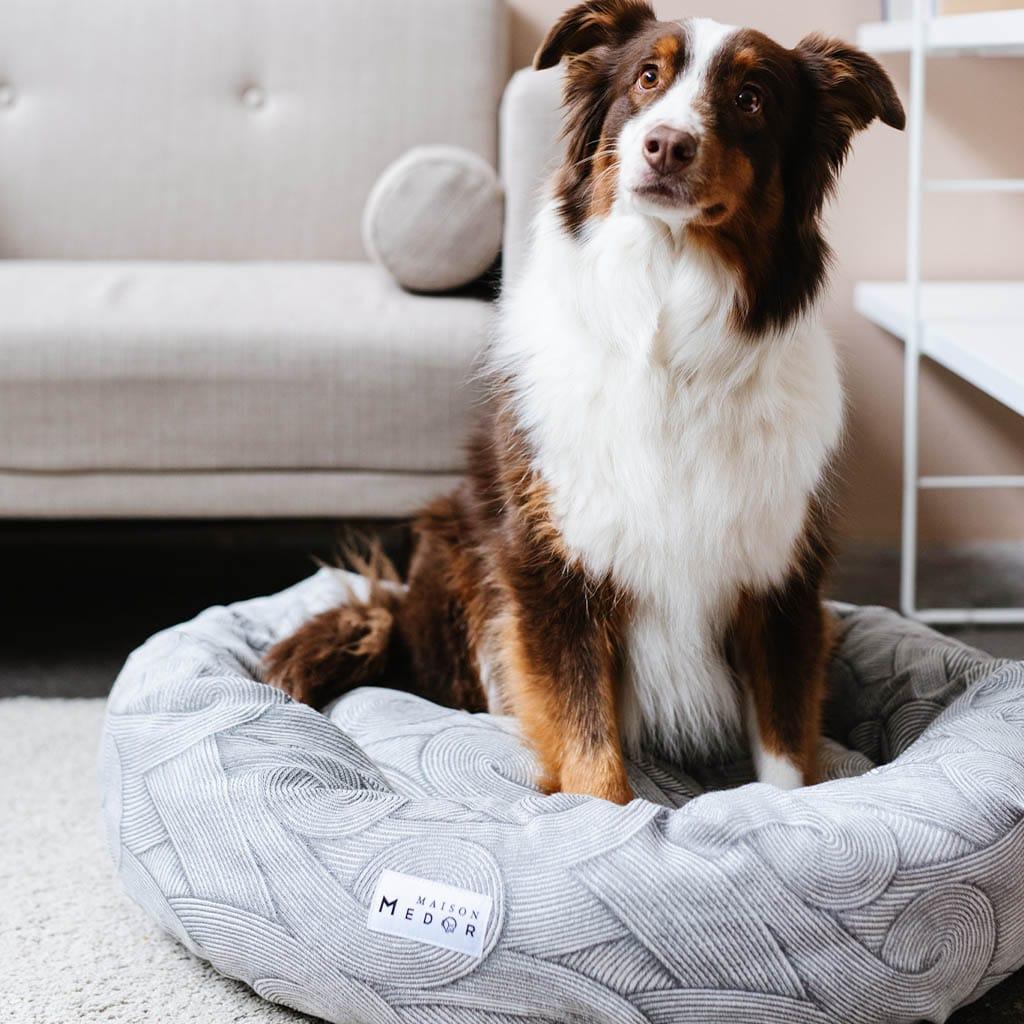 panier pour chien de luxe déhoussable JAVA de Maison Médor