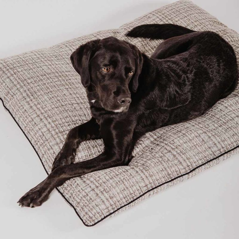 Rosalie le coussin pour chien made in France